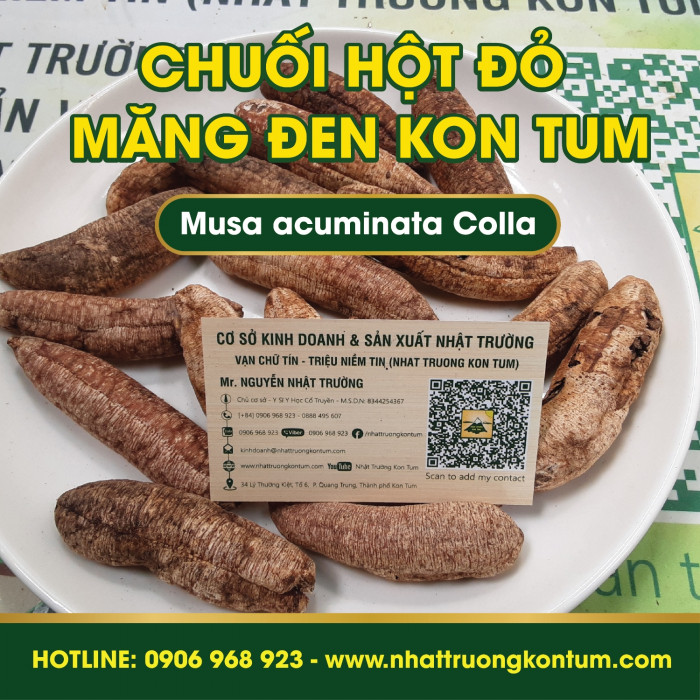 Chuối Hột Đỏ Măng Đen Kon Tum - Musa acuminata Colla Mang Den Kon Tum Vietnam - Túi 1kg