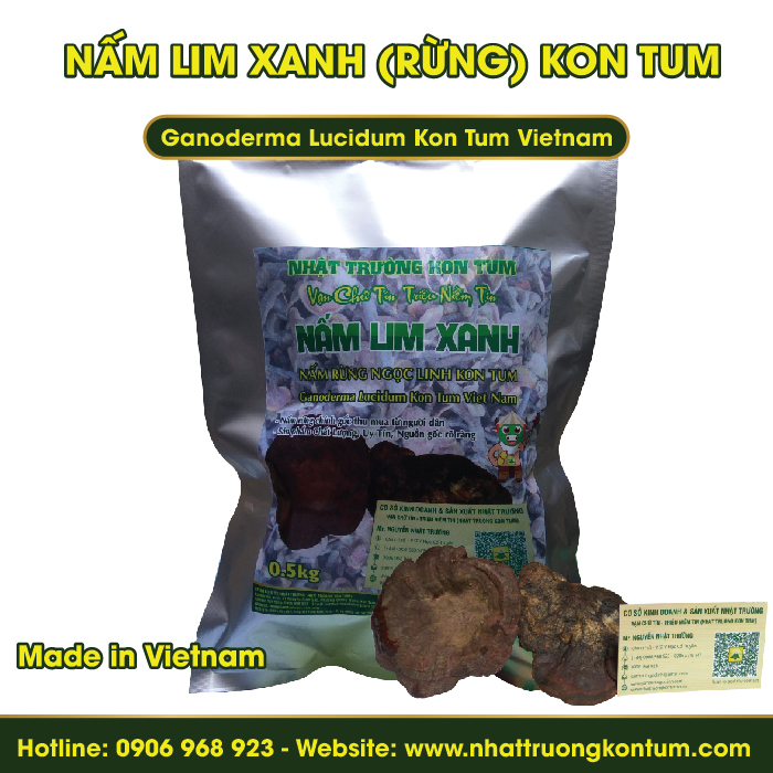 Nấm Lim Xanh Rừng Tự Nhiên Kon Tum - Ganoderma Lucidum Kon Tum Vietnam - Túi 0.5kg