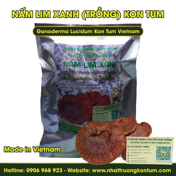 Nấm Lim Xanh Trồng Bán Tự Nhiên Kon Tum - Ganoderma Lucidum Kon Tum Vietnam - Túi 0.5kg