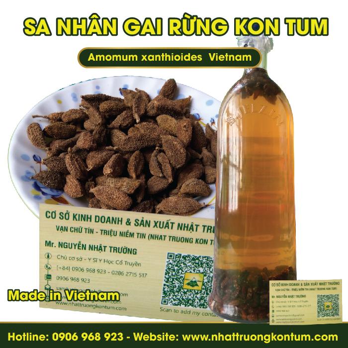 Sa Nhân Gai Rừng Kon Tum - Amomum xanthioides Vietnam - Túi 1kg