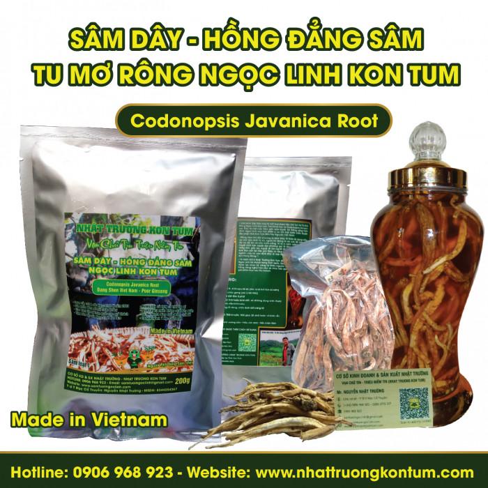 Sâm Dây (Hồng Đẳng Sâm) Tu Mơ Rông Ngọc Linh Kon Tum - Codonopsis Javanica - Loại 2 - Túi 0.5kg